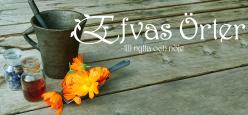 Efvas örter- till nytta och nöje